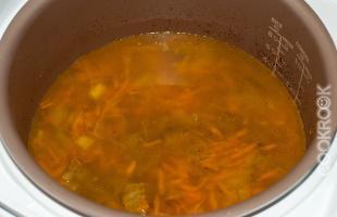 Мясо в бульоне с луком и морковью
