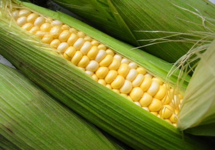 Небольшие хитрости вареной кукурузы