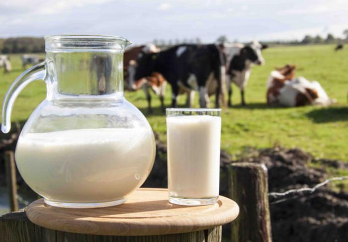 Немецкие исследователи: пастеризованное молоко провоцирует аллергию