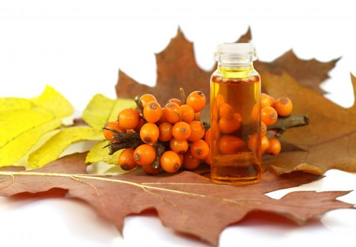 Облепиха — оранжевое чудо
