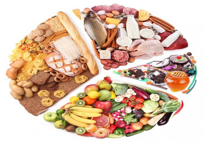 Что говорят ученые о правильном питании
