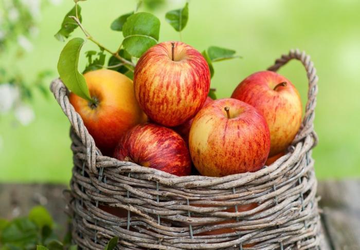 Неизвестное о яблоках