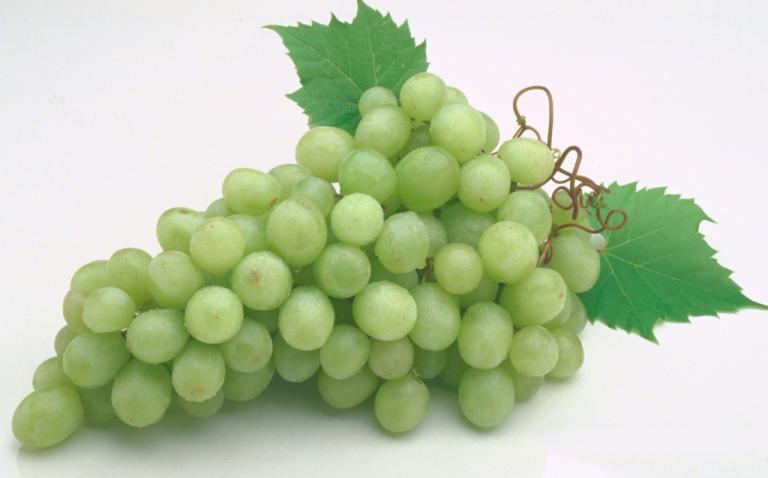 Волшебные ягоды винограда