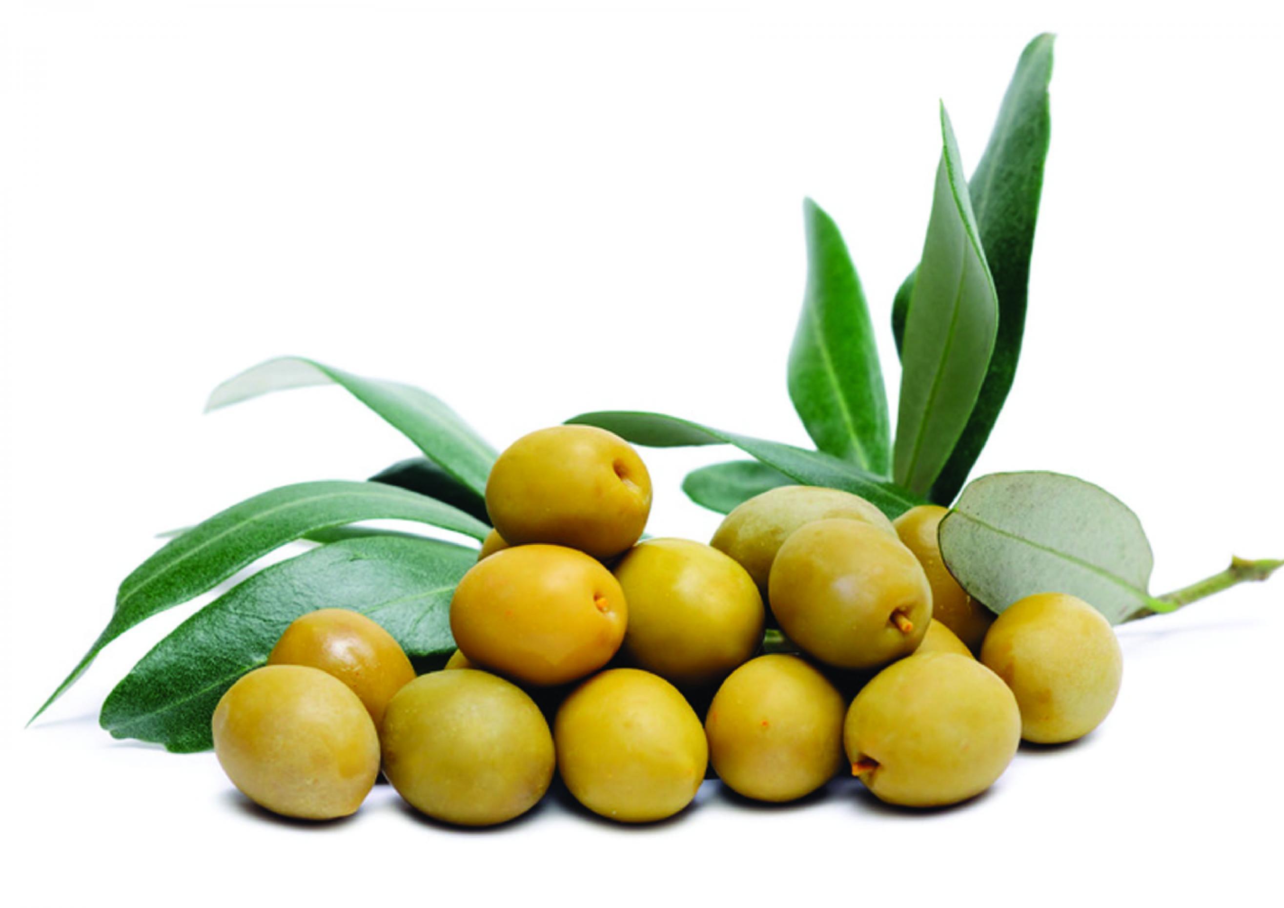 Такие разные оливки