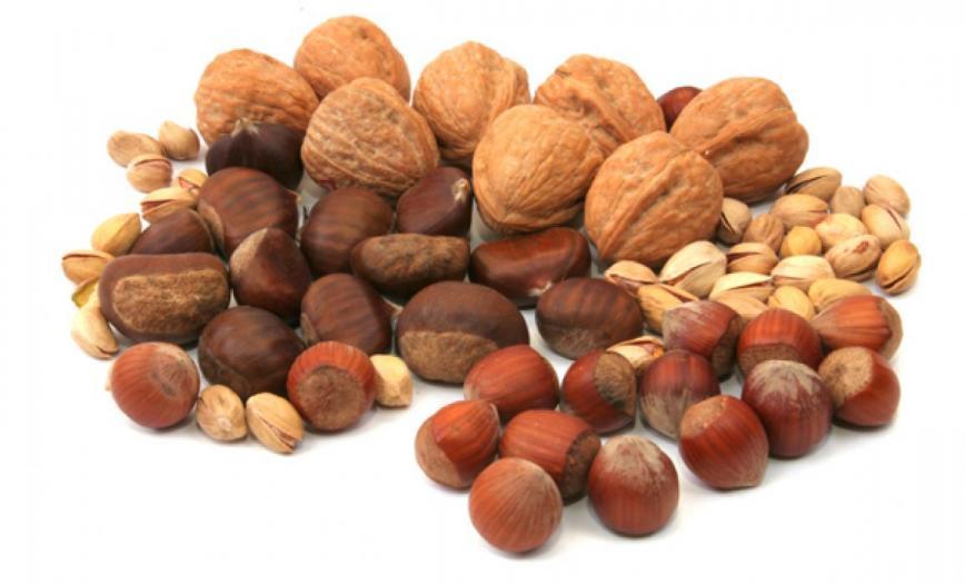 Такие разные орехи